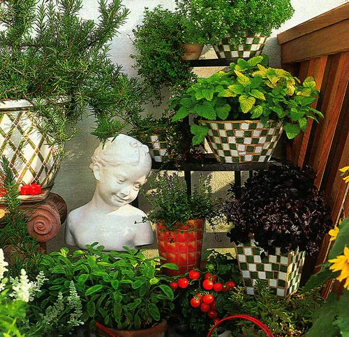 Как разместить домашние растения в